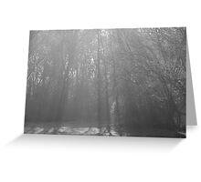 The Light Of Morning Fog Greeting Card