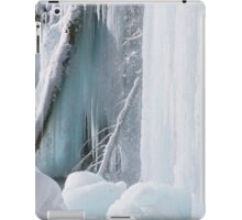 Winter Wonderland iPad Case iPad Case/Skin