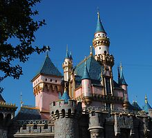 Sleeping Beauty's Castle by cherrygirlme