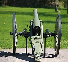 field cannon by mrivserg