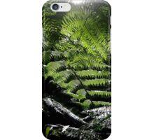 Hidden in New Zealand iPhone Case/Skin