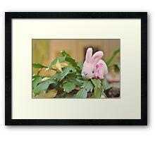 Bunny Collection #12 - bunny on a christmas cactus Framed Print