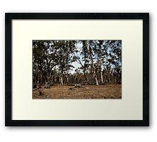 untitled #112 Framed Print