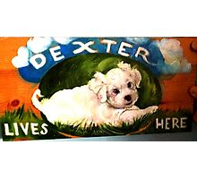 DEXTER LIVES HERE Photographic Print