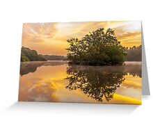 Sunrise in Epping Forest Greeting Card