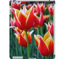 Tulips 3 iPad Case/Skin