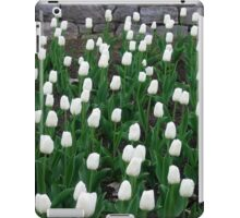 Tulips 10 iPad Case/Skin