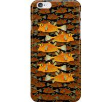 many fish (school) iPhone Case/Skin