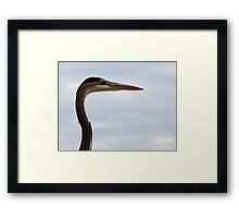 Graceful Heron Framed Print