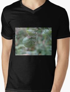 THE PENITENT Mens V-Neck T-Shirt