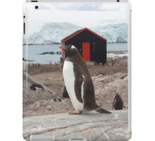 Penguin Post Office iPad Case/Skin