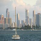 Broadwater  Gold  Coast misty day. by Virginia McGowan