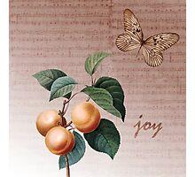 Inspired Joy Apricots Photographic Print