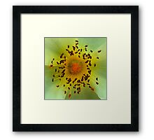 Yellow Magic Flower Framed Print