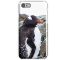 Penguin Chick iPhone Case/Skin