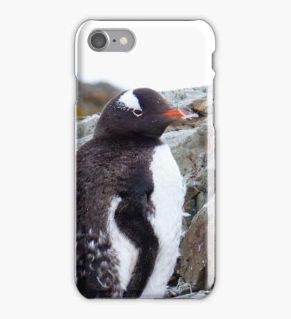 Penguin Chick iPhone Case/Skin