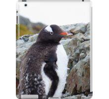 Penguin Chick iPad Case/Skin