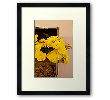 Yellow Begonias in Rose Box - Digital Oil Painting Framed Print