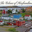 The Colours of Newfoundland by Vickie Emms