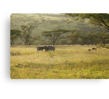 So Africa! Canvas Print