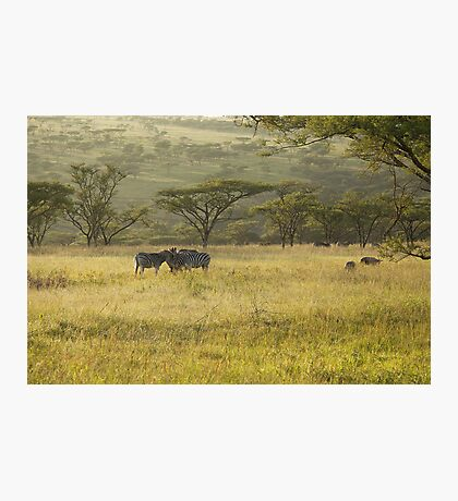 So Africa! Photographic Print