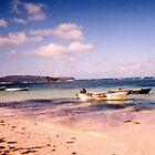 Dominican Beach by Sarah N. Hood
