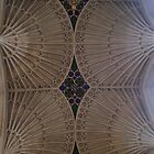 Cathedral Roof by SHappe