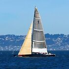 Sailing in the San Francisco Bay by photoartful