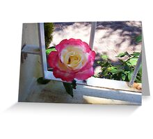 Rose Two - 10 11 12 Greeting Card