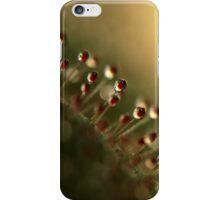 Evening Sundew iPhone Case/Skin