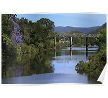 Jacaranda reflections in the Mary River. Poster