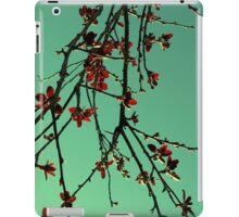 Oriental iPad Case/Skin