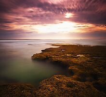 Eroded Dreams by Simone Byrne