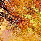 Autumn in paradise by Stephanie Köhl