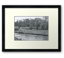 Early Spring in England Black and White Framed Print