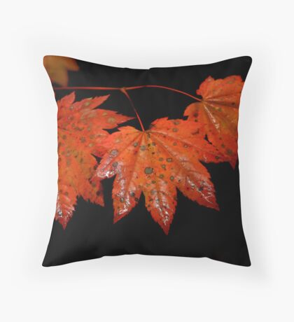 From Glory To Glory Throw Pillow