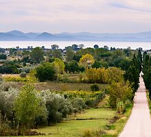 Lago Trasimeno from Sanguineto, Tuoro sul Trasimeno, Umbria, Italy by Andrew Jones
