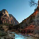 Zion River by Sylvain Dumas