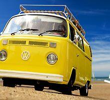 Beach Beetle by Steve Woods