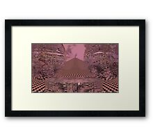 Director Of Chaos Framed Print