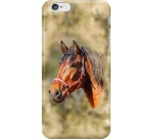 Magnificent Profile of a Horse iPhone Case/Skin