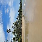 North Mission Beach on Australia Day 2012 by STHogan