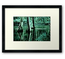 Cypress Love Framed Print