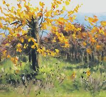 Vineyard Gold by Karen Ilari