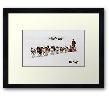 Dog Sledding Framed Print