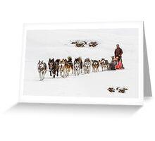 Dog Sledding Greeting Card