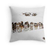 Dog Sledding Throw Pillow