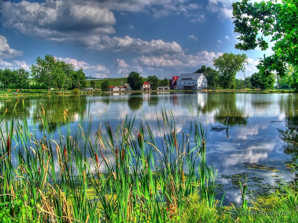Reflections Of A Beautiful Day by James Brotherton
