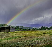 Darby Rainbow by lincolngraham