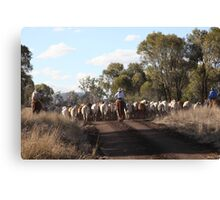 Moving The Cattle Canvas Print